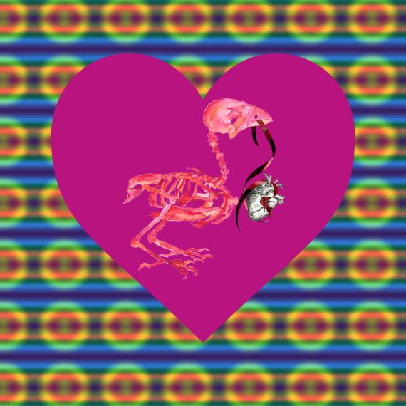 Valentine - Sparrow